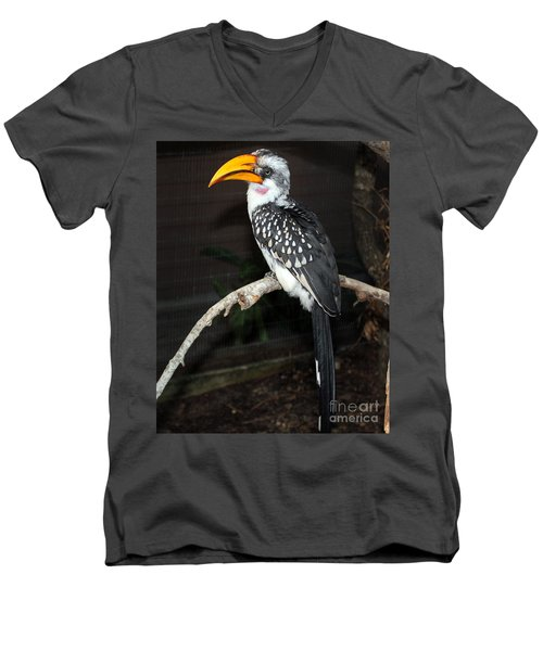 Men's V-Neck T-Shirt featuring the photograph Yellow-billed Hornbill by Kathy  White