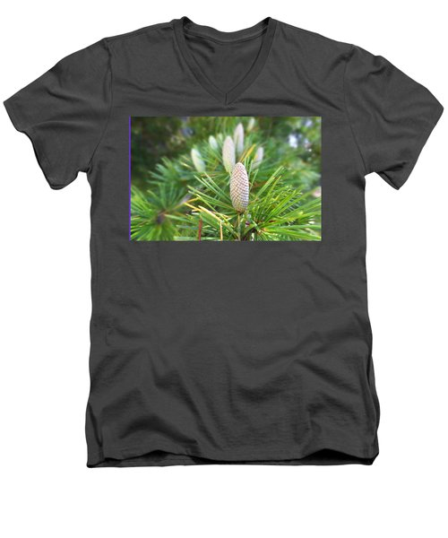 Men's V-Neck T-Shirt featuring the photograph Young Pine Cones by Anne Mott
