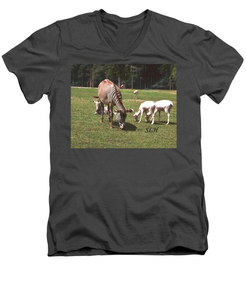 Zebra's Grazing Men's V-Neck T-Shirt