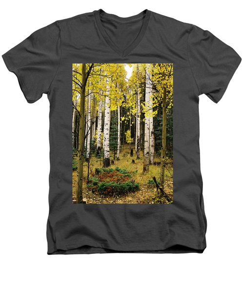 Aspen Grove In Upper Red River Valley Men's V-Neck T-Shirt