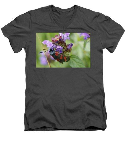 Burnet Moth Men's V-Neck T-Shirt by Martina Fagan