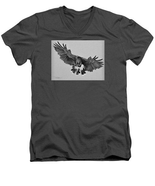 Da181 Harris's Hawk By Daniel Adams Men's V-Neck T-Shirt