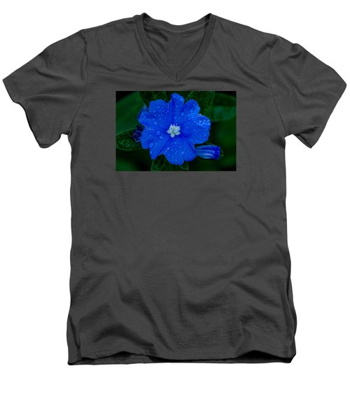 Men's V-Neck T-Shirt featuring the photograph  Evolvulus Glomeratus by Keith Hawley