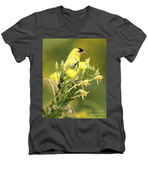 Men's V-Neck T-Shirt featuring the photograph  Goldfinch by Debbie Stahre