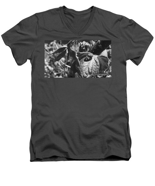 Love-bugs - No. 2016 Men's V-Neck T-Shirt
