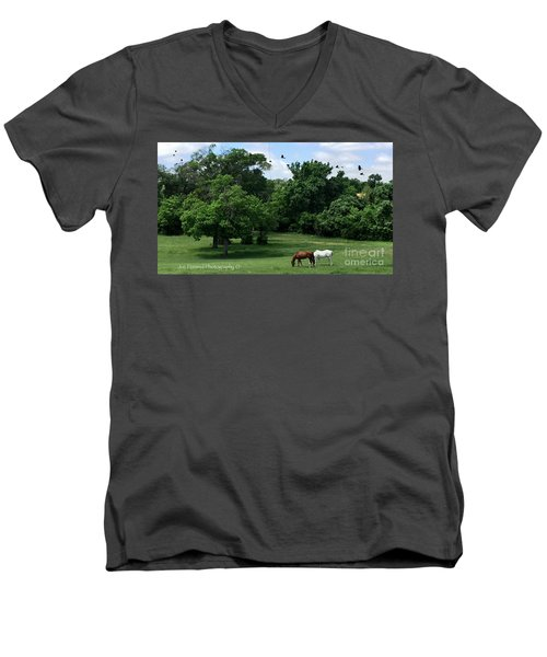 Men's V-Neck T-Shirt featuring the photograph  Mr. And Mrs. Horse - No. 195 by Joe Finney