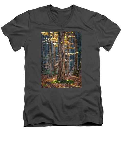 #0187 - Dummerston, Vermont Men's V-Neck T-Shirt