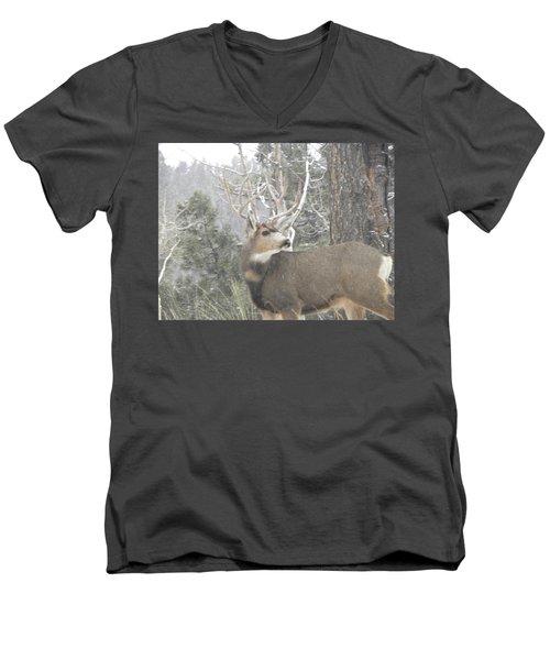Buck Front Yard Divide Co Men's V-Neck T-Shirt