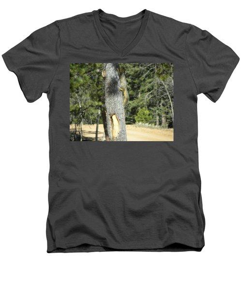 Squirrel Home Divide Co Men's V-Neck T-Shirt