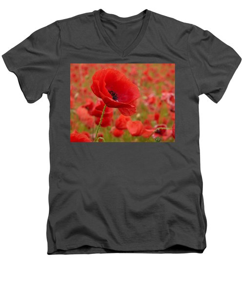 Red Poppies 3 Men's V-Neck T-Shirt by Jouko Lehto