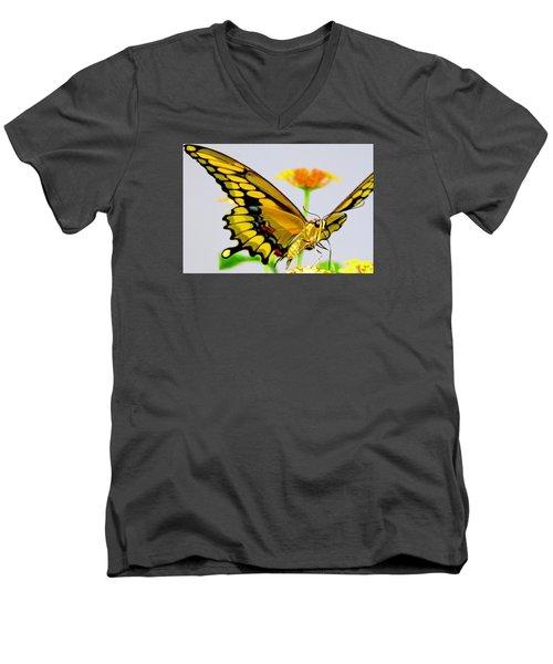 Afternoon Sip Men's V-Neck T-Shirt by Charlotte Schafer