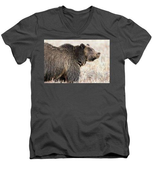 All Seems Beautiful Men's V-Neck T-Shirt