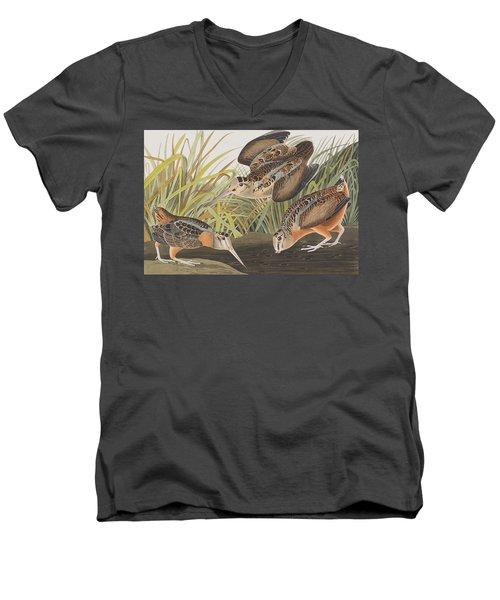 American Woodcock Men's V-Neck T-Shirt by John James Audubon