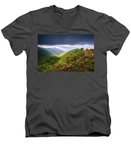 Asheville Nc Blue Ridge Parkway Spring Flowers North Carolina Men's V-Neck T-Shirt
