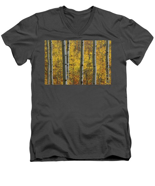 Aspen In Autumn At Mcclure Pass Men's V-Neck T-Shirt by Jetson Nguyen