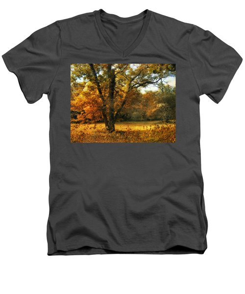 Autumn Arises Men's V-Neck T-Shirt