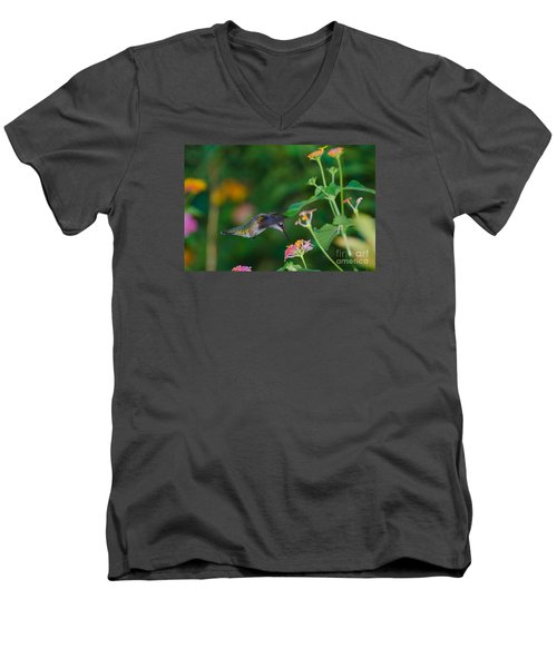 Awesome Beauty Men's V-Neck T-Shirt by Donna Brown