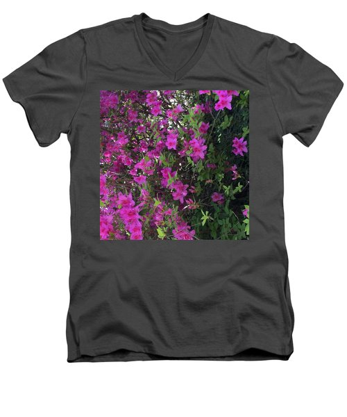 Azaleas Men's V-Neck T-Shirt by Kay Gilley