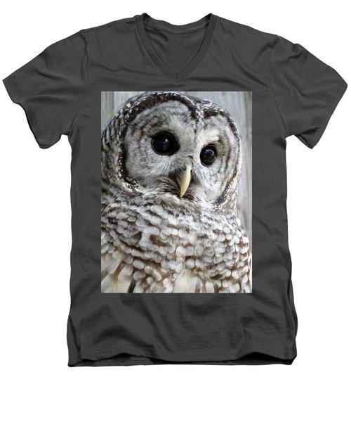 Barred Owl Men's V-Neck T-Shirt by Rebecca Overton