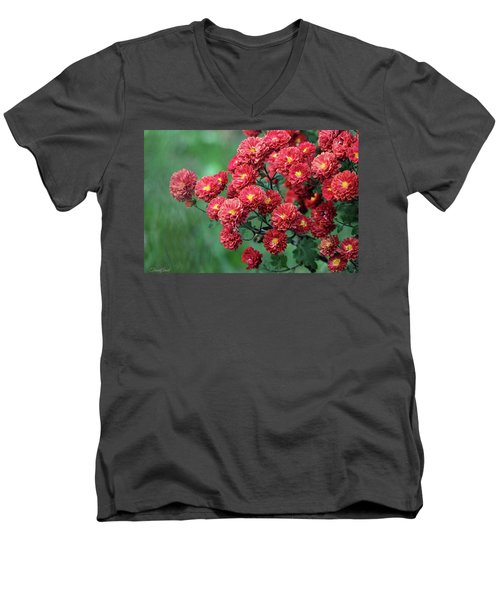 Beautiful Red Mums Men's V-Neck T-Shirt
