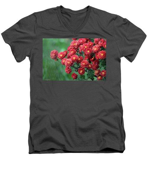 Beautiful Red Mums Men's V-Neck T-Shirt