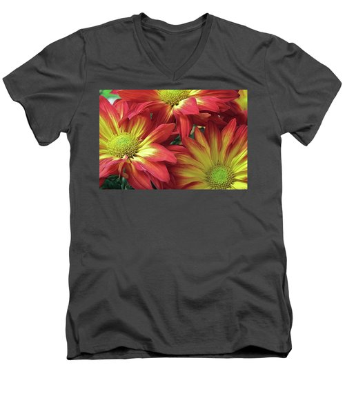Men's V-Neck T-Shirt featuring the photograph Beautiful Trio by Allen Beatty