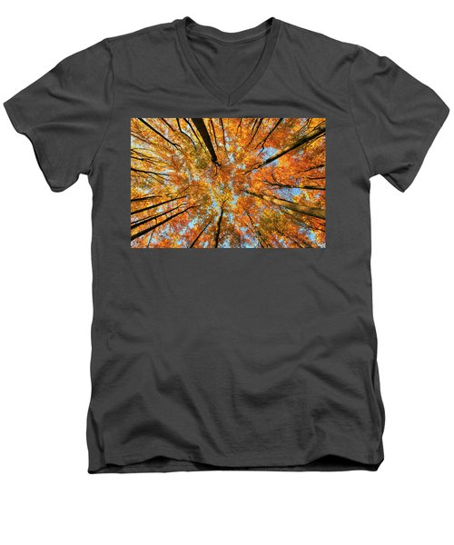Beneath The Canopy Men's V-Neck T-Shirt by Edward Kreis