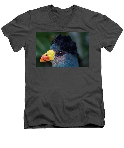 Bird Face Men's V-Neck T-Shirt by Jay Stockhaus