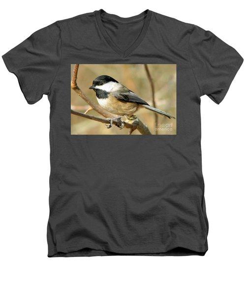 Black-capped Chickadee Men's V-Neck T-Shirt