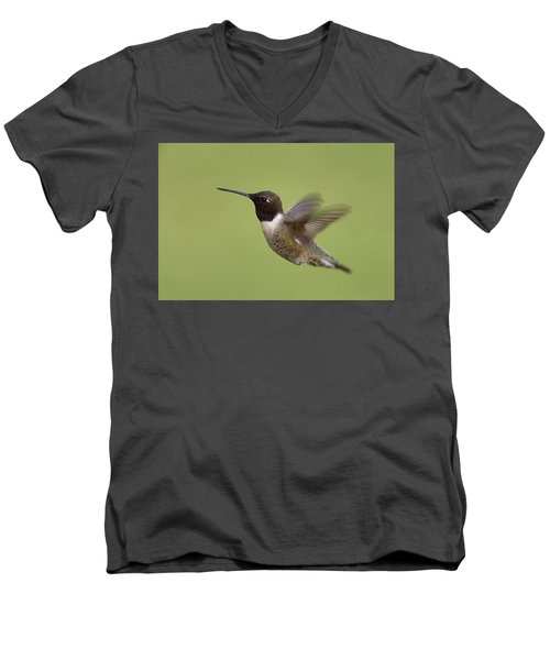 Men's V-Neck T-Shirt featuring the photograph Black-chinned Hummingbird by Doug Herr