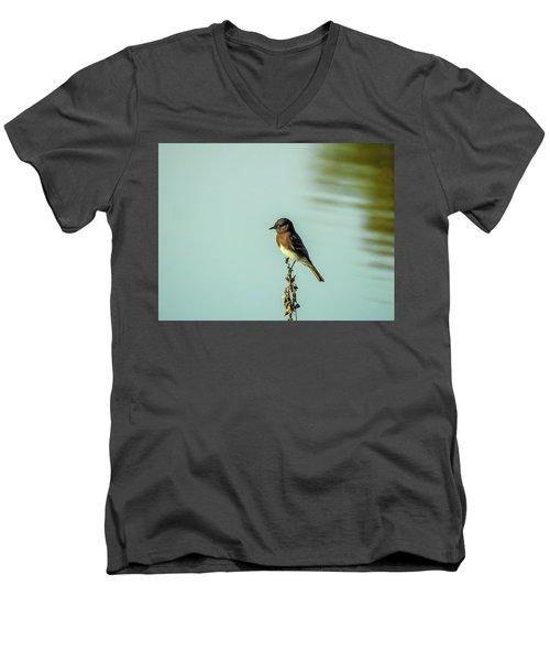 Black Phoebe Men's V-Neck T-Shirt