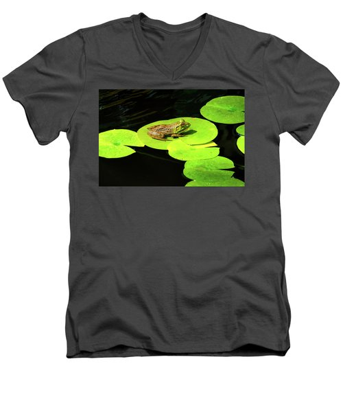 Men's V-Neck T-Shirt featuring the photograph Blending In by Greg Fortier