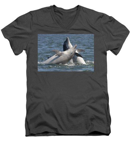 Bottlenose Dolphins  - Scotland  #15 Men's V-Neck T-Shirt