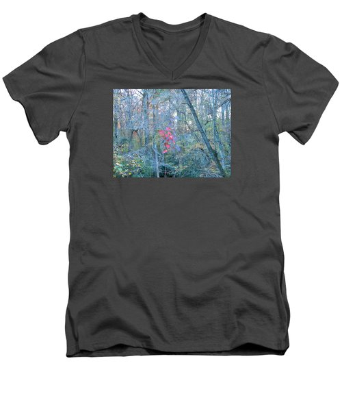 Men's V-Neck T-Shirt featuring the photograph Burst Of Color by Kay Gilley