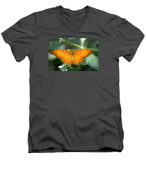 Men's V-Neck T-Shirt featuring the photograph Butterfly by Jerry Cahill