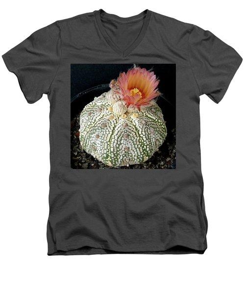 Cactus Flower 4 Men's V-Neck T-Shirt by Selena Boron