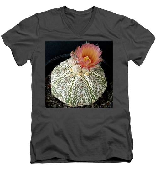 Cactus Flower 4 Men's V-Neck T-Shirt