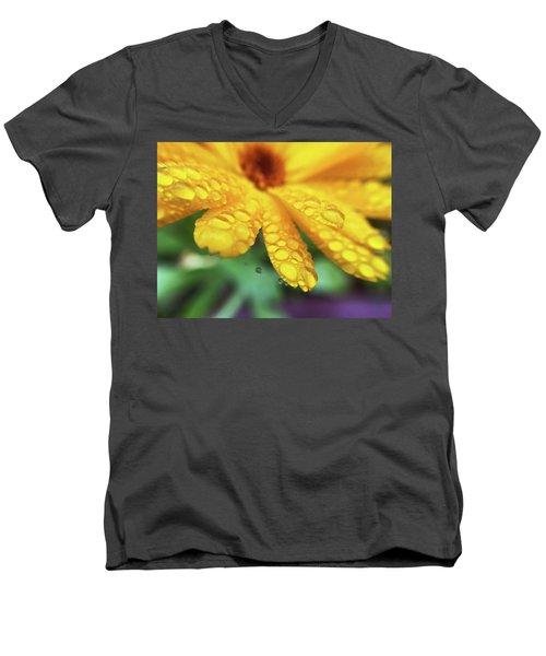Calendula Officinalis Men's V-Neck T-Shirt