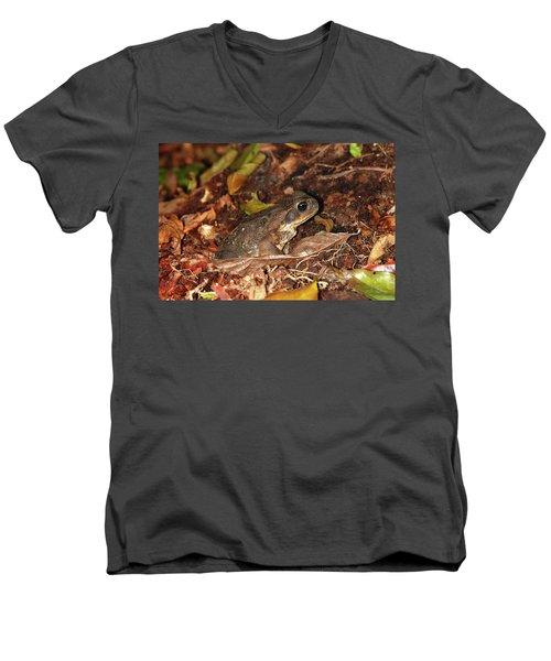 Cane Toad Men's V-Neck T-Shirt