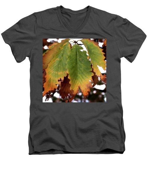 Changing Leaves Men's V-Neck T-Shirt
