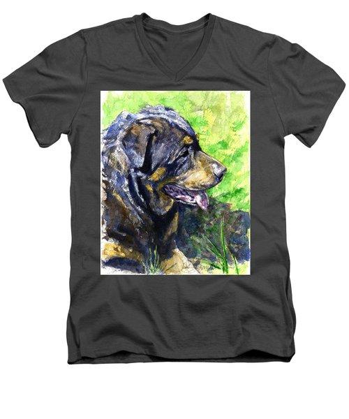Chaos Men's V-Neck T-Shirt by John D Benson