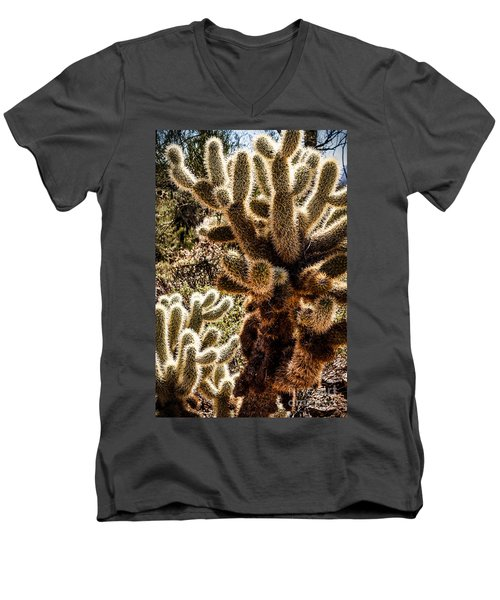 Cholla Cacti Men's V-Neck T-Shirt by Lawrence Burry