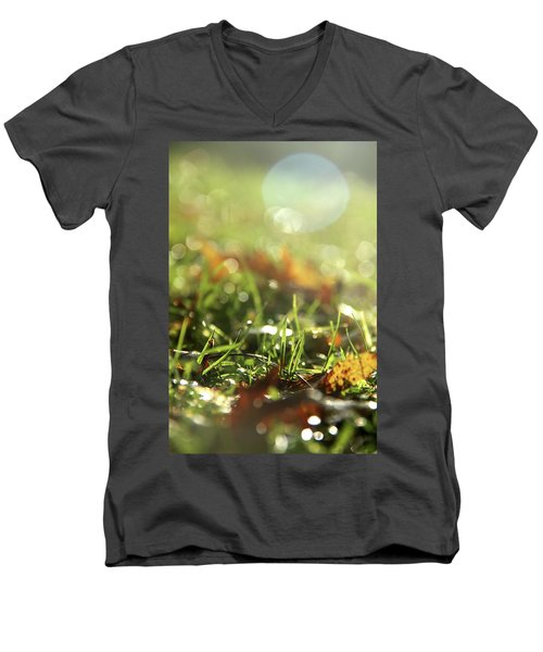 Close-up Of Dry Leaves On Grass, In A Sunny, Humid Autumn Morning Men's V-Neck T-Shirt