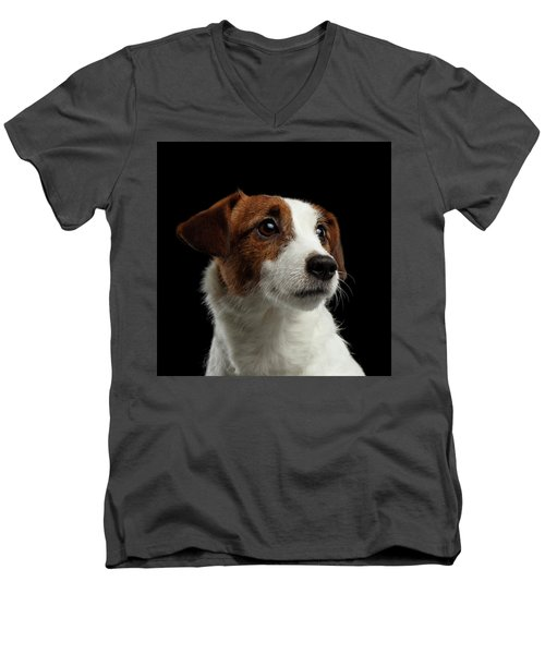 Men's V-Neck T-Shirt featuring the photograph  Closeup Portrait Of Jack Russell Terrier Dog On Black by Sergey Taran