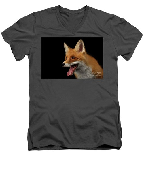 Closeup Portrait Of Smiled Red Fox Isolated On Black  Men's V-Neck T-Shirt by Sergey Taran
