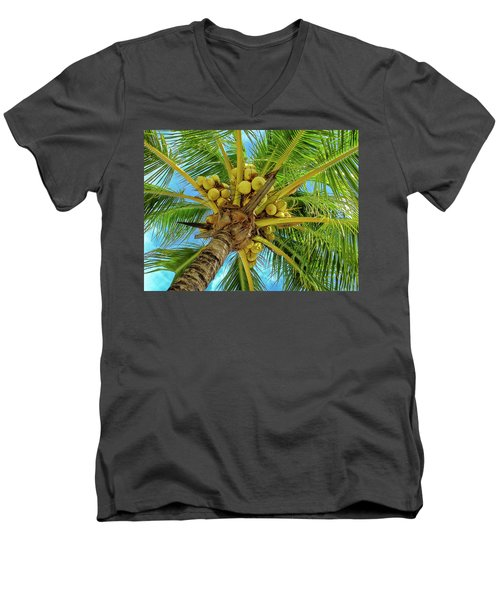 Coconuts In Tree Men's V-Neck T-Shirt