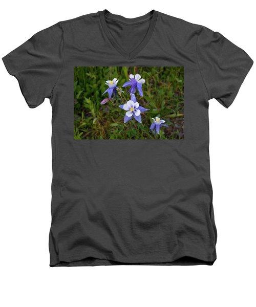 Colorado Columbine Men's V-Neck T-Shirt