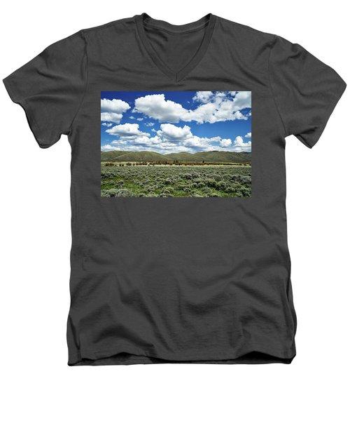 Colorado Vista Men's V-Neck T-Shirt by L O C