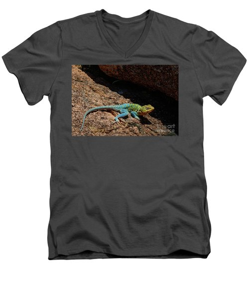 Colorful Lizard II Men's V-Neck T-Shirt