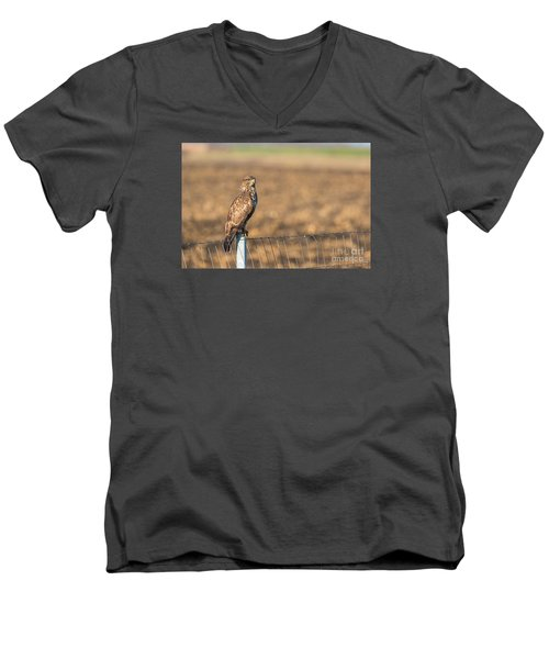 Common Buzzard Along The Highway Nis - Budapest Men's V-Neck T-Shirt by Jivko Nakev